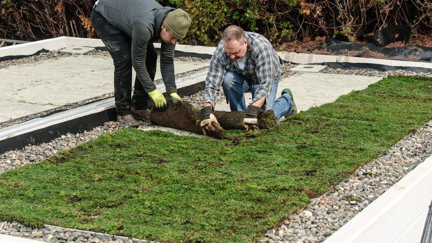 Dach Decken Mit Wellplatten In 7 Schritten Obi In 2020 Dachbegrunung Gartendach Dachterrasse Begrunen
