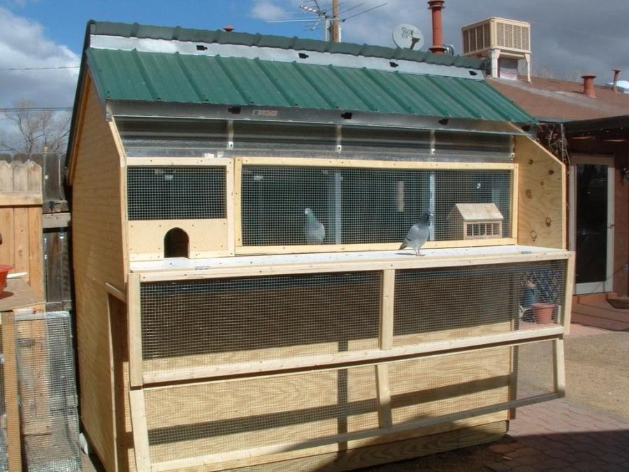 Apex Aviary Lofts Ecco Sheds And Pigeon Lofts Pigeon Loft