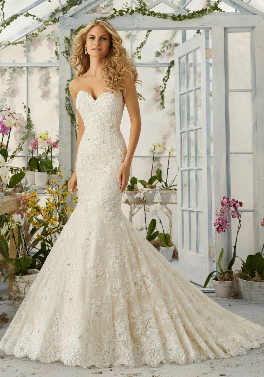 White mermaid wedding dress  Pin by Michelle Haigis on Weddings  Pinterest  Weddings