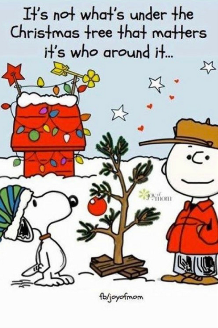 Charlie Brown Christmas Quotes Pin by Joy Chamberlain on Whimsical | Charlie brown christmas  Charlie Brown Christmas Quotes