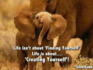 Vida es recrearte.
