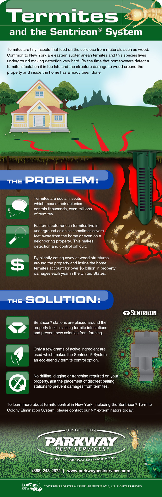 Termites in New York are no match for The Sentricon® System!