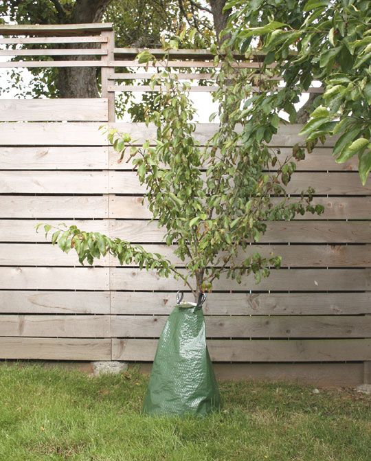 Water New Trees Wisely with Slow Release Bags