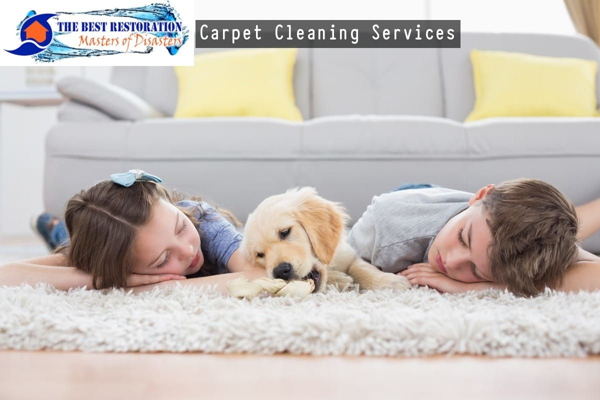 Looking For Carpet Cleaning Services In Gainesville Fl Contact The Best Restoration How To Clean Carpet Deep Carpet Cleaning Clean Car Carpet