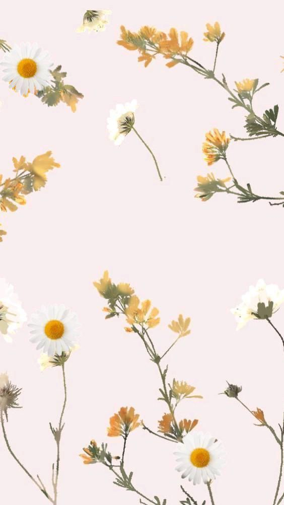 wallpaper background flowers green and orange aesthetic phone