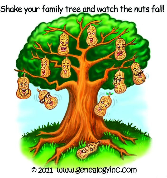 Shake your family tree and watch the nuts fall ...