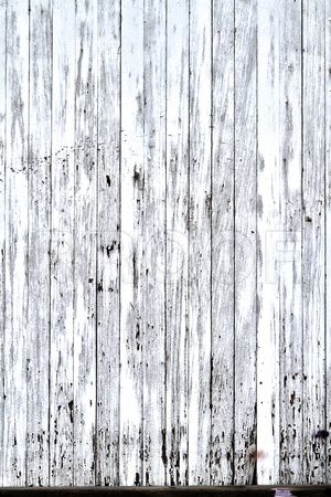 White Fence Rustic With Ling Paint
