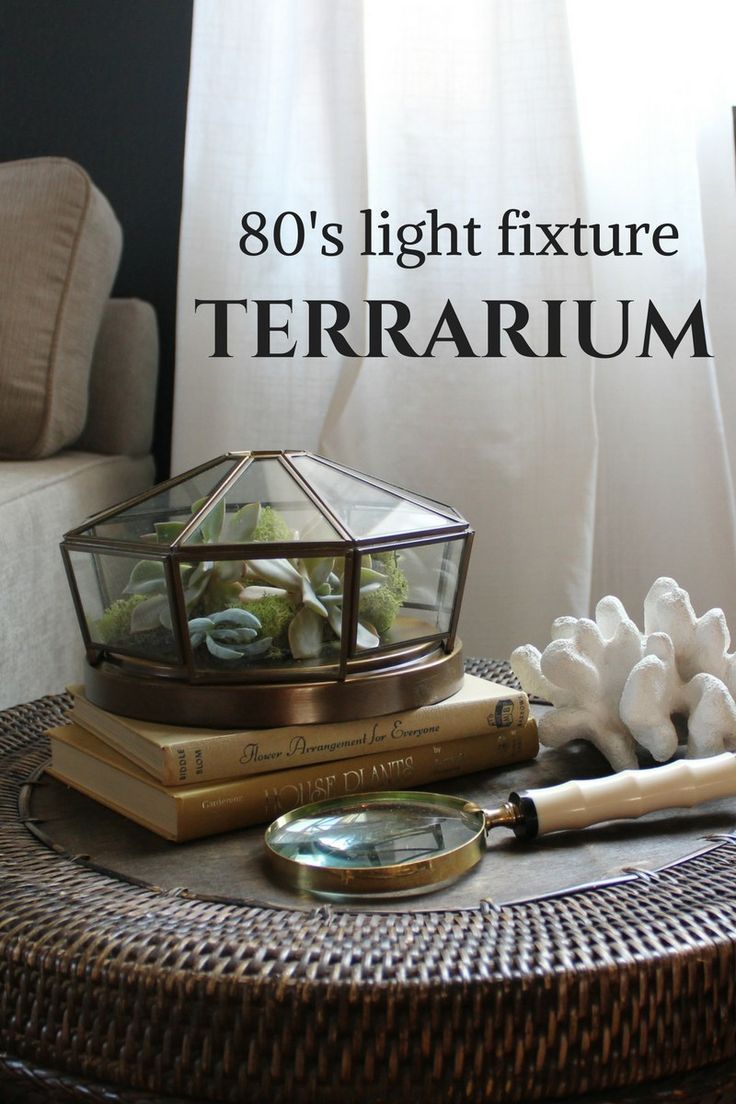 Repurpose a light fixture into a succulent terrarium eggers on sea