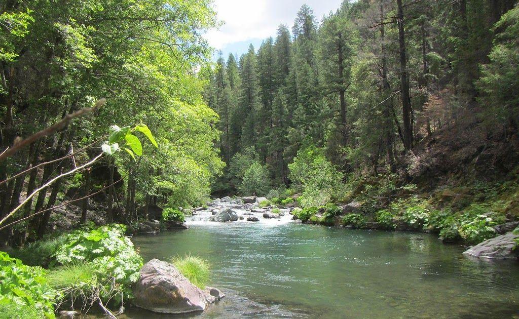Terpopuler 30 Gambar Pemandangan Sungai Indah Sungai Di Pegunungan Sungai Salju Sungai Bebaruan Di Tengah Hutan Sungai Di G Di 2020 Pemandangan Sungai Pantai Cenang