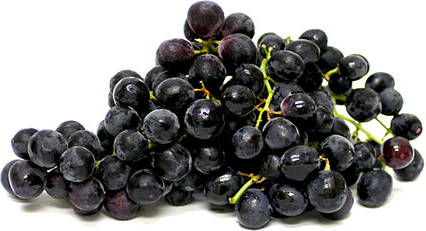 Black seedless grapes are round to slightly oval in shape, their skin is deep purple to near black in color with a waxy bloom. The skin is firm and does not slip from its flesh. The flesh is tender and overtly juicy in texture with a sweet, strong, muscat flavor. Although Black seedless grapes are defined as seedless, occasionally they will contain one to two almost unrecognizable tiny, edible fleshy seeds.