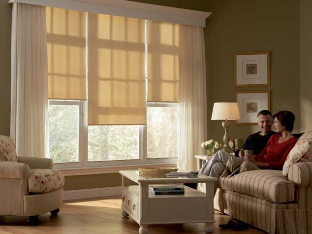 Hunter Douglas Shades With Images Living Room Blinds Blinds