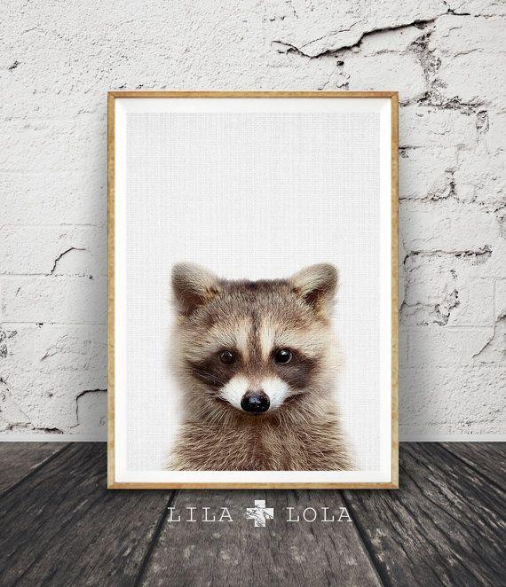 Chambre 4x5: Raccoon Print, Baby Animal, Woodland Animals Wall Art