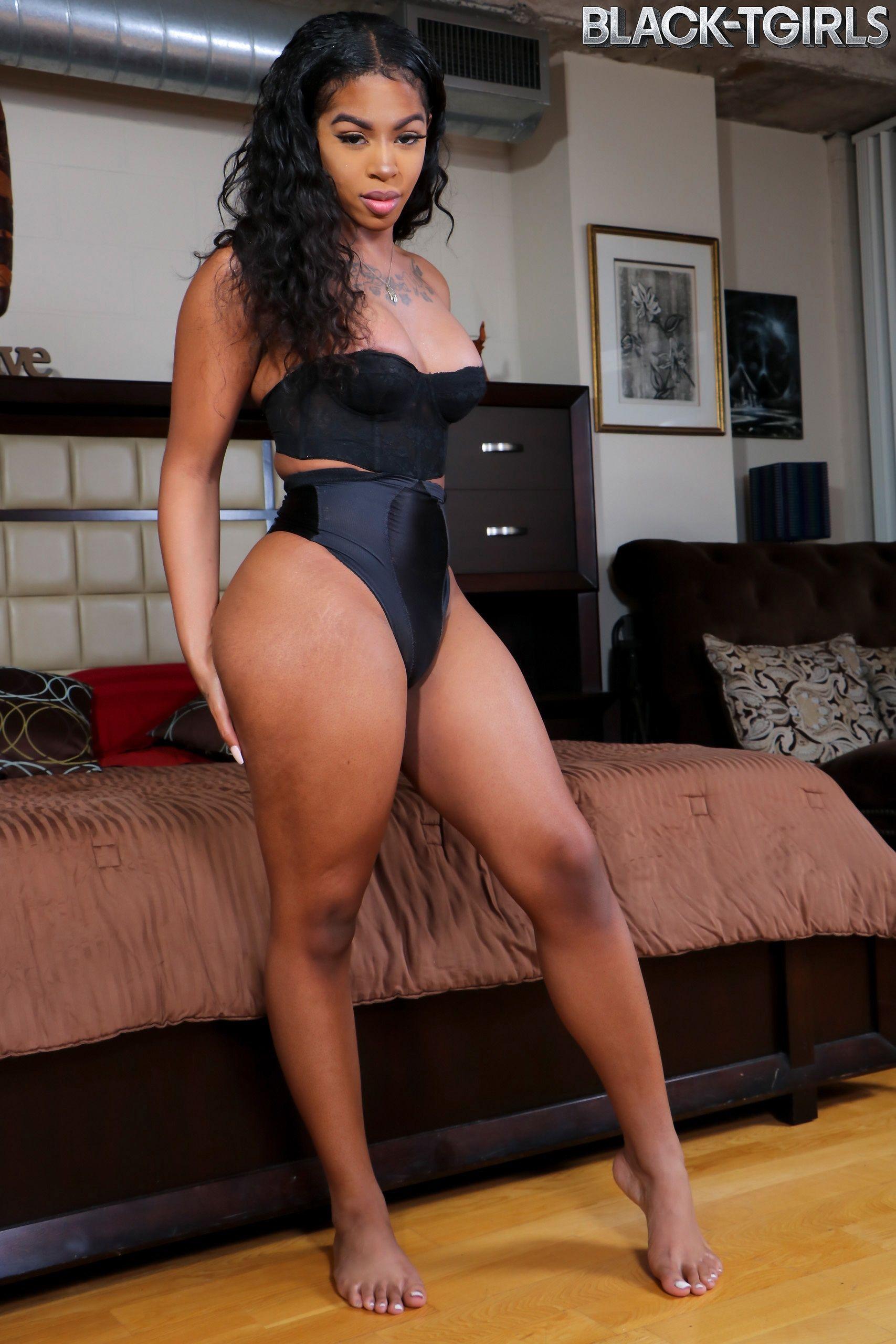 Sexy ebony tgirls