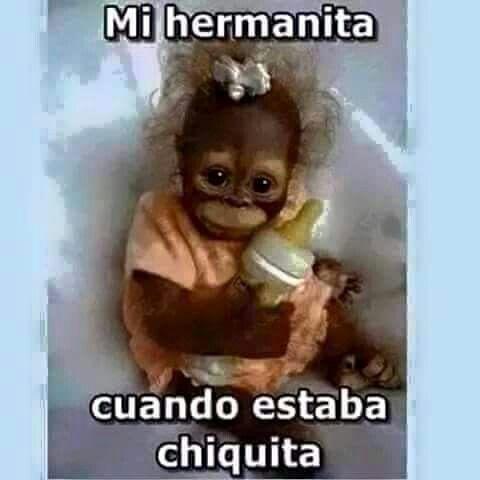 Mi Hermanita Most Hilarious Memes Funny Video Memes Funny Spanish Memes