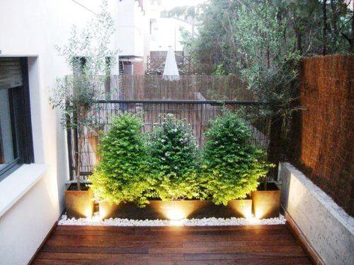 Plantas en balcones modernos buscar con google for Terrazas 14 vicuna