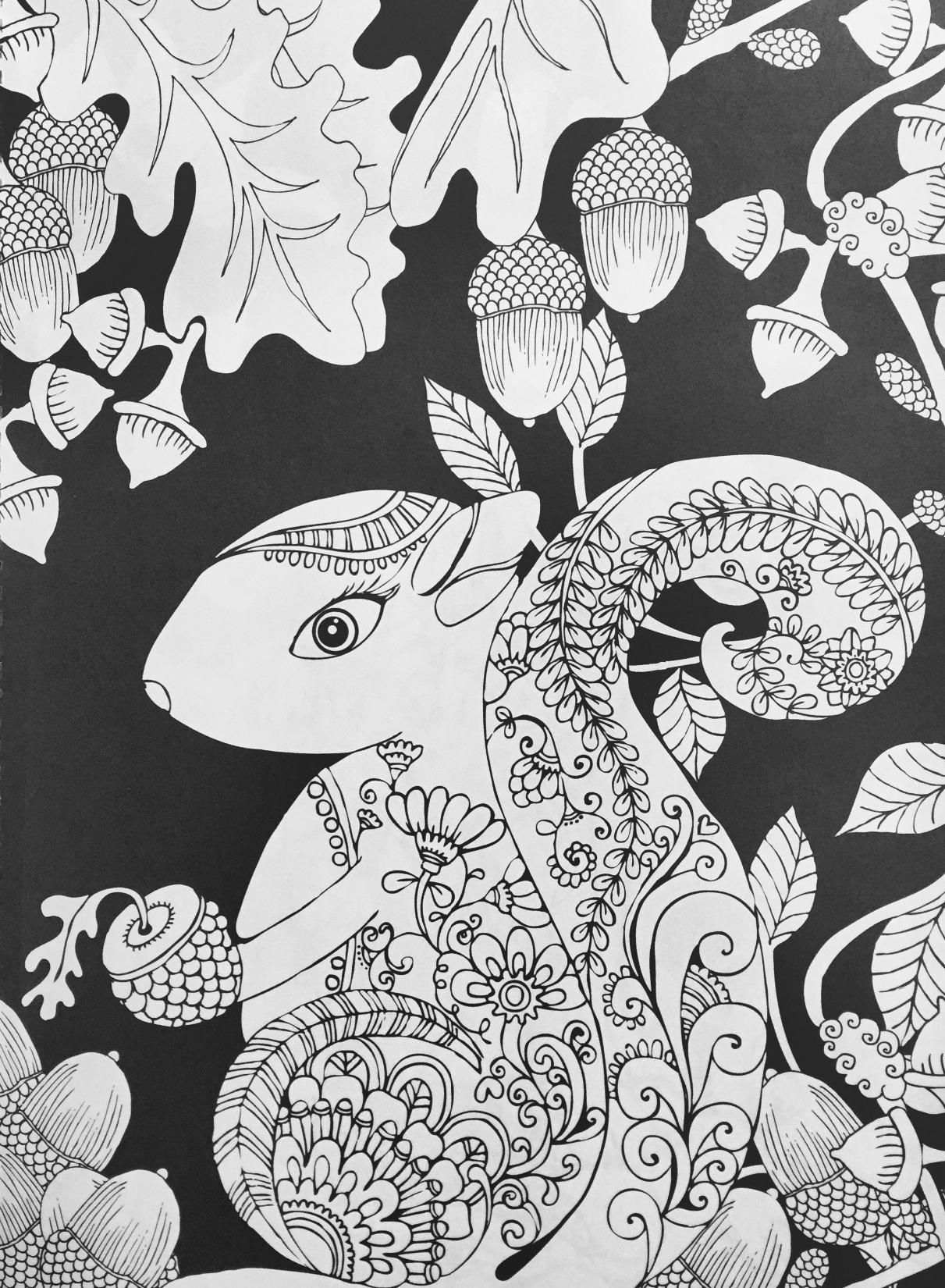 Amazon Com Creative Haven Midnight Forest Coloring Book Animal Designs On A Dramatic Black Backgrou Animal Coloring Books Forest Coloring Book Coloring Books