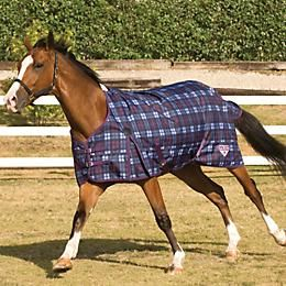 Horses Horse Supplies Equestrian Outfits