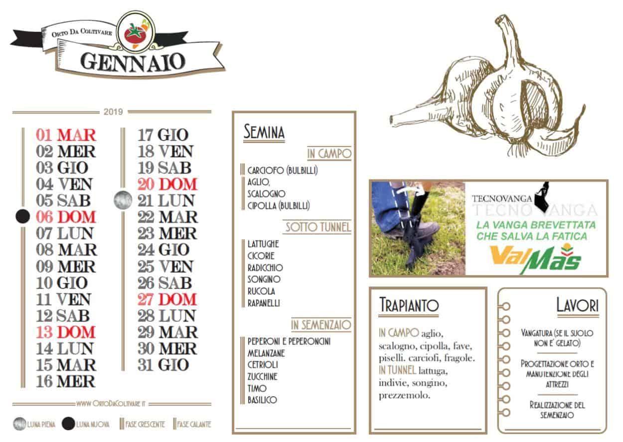 Cosa Seminare A Gennaio calendario orto gennaio 2020: fasi lunari, semine e lavori