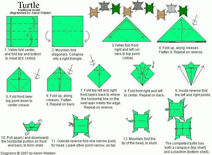 Easy Origami Turtle Instructions Image Gallery - Photonesta ... | 547x746