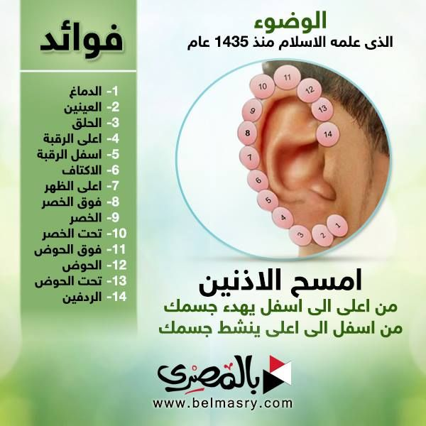 Pin By Faten Abdelhadi On الصحه Reflexology Ear Reflexology Health