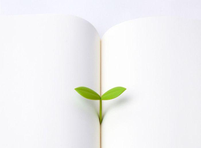 sprout-bookmark-doodoo-designboom-shop09