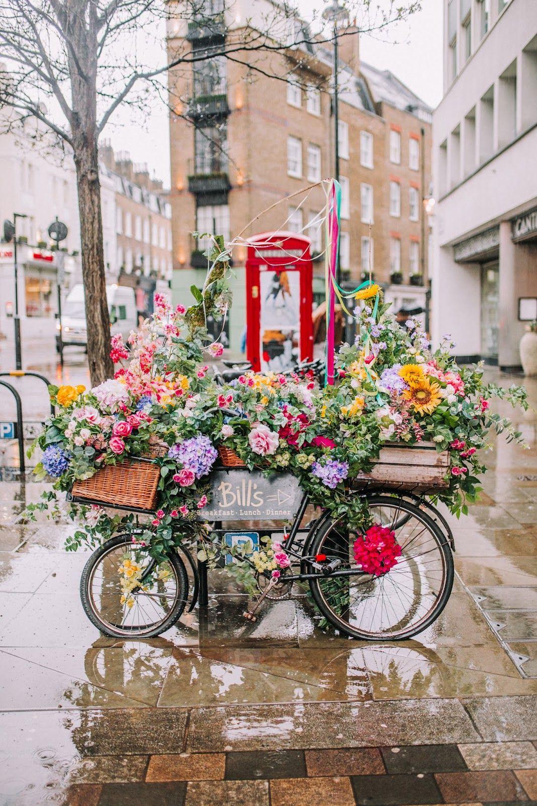 Spring in London 2018 Chelsea flower show, Flower show