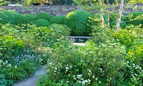 garden ideas border ideas perennial planting perennial combination summer borders betula