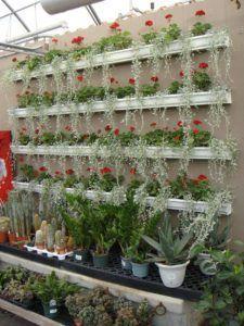 DeMoyne's Greenhouse http://lgrmag.com/inspirationbook/