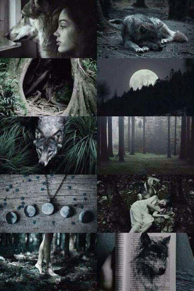 Wolf Witch Aesthetic Оборотни Оборотень Сказочные