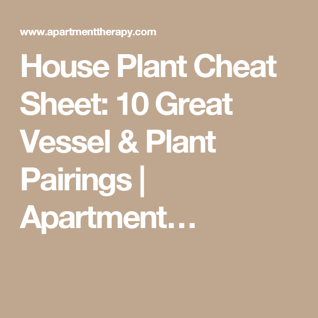 House Plant Cheat Sheet: 10 Great Vessel & Plant Pairings   Apartment…