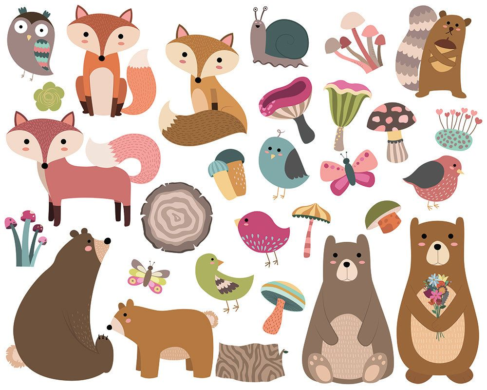 Woodland Forest Animals Clipart Set of 29 PNG, Vector