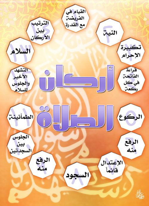 أركان الصلاة Islamic Kids Activities Islam For Kids Islam Facts