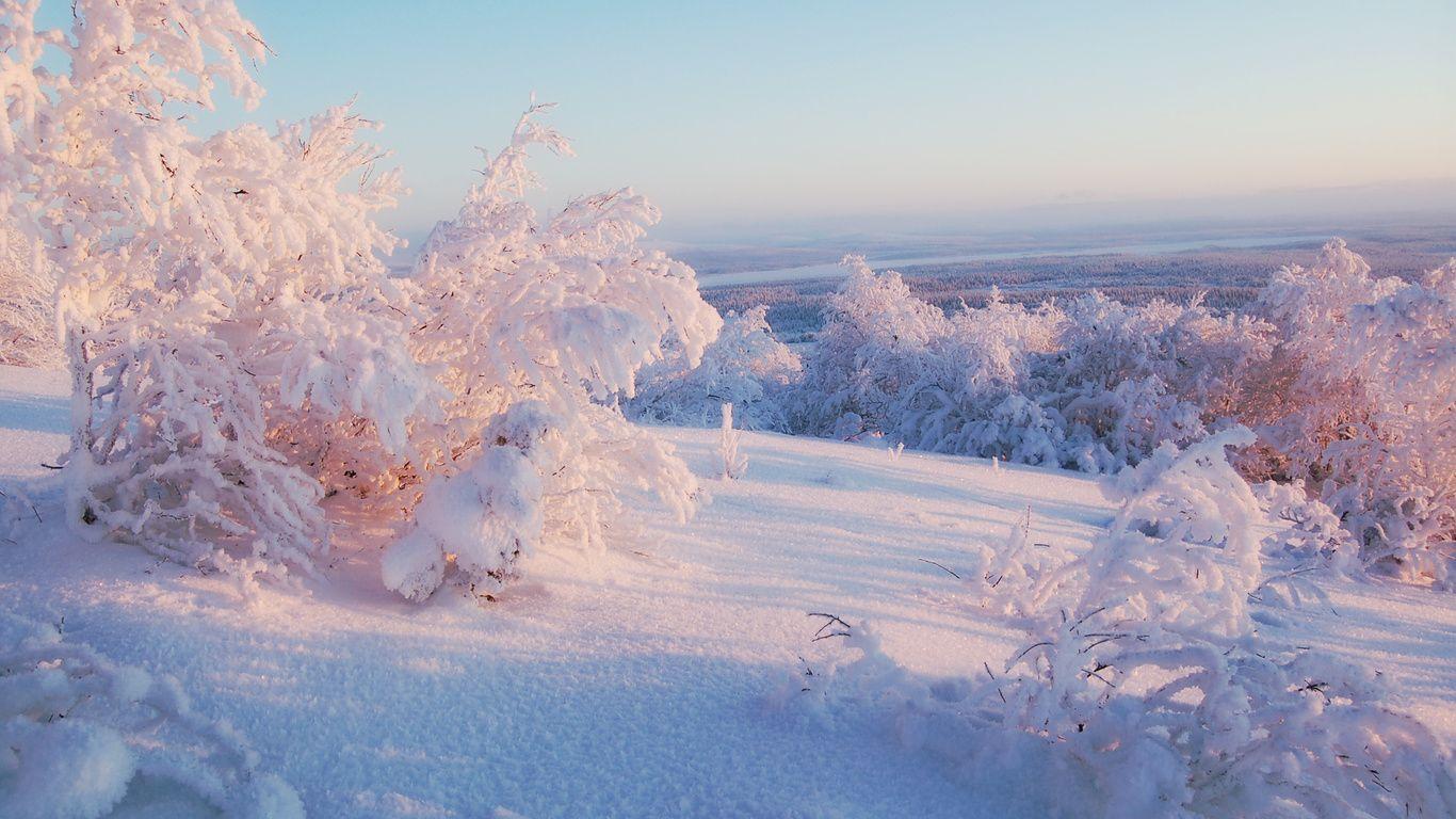 Rewallsg Зима pinterest