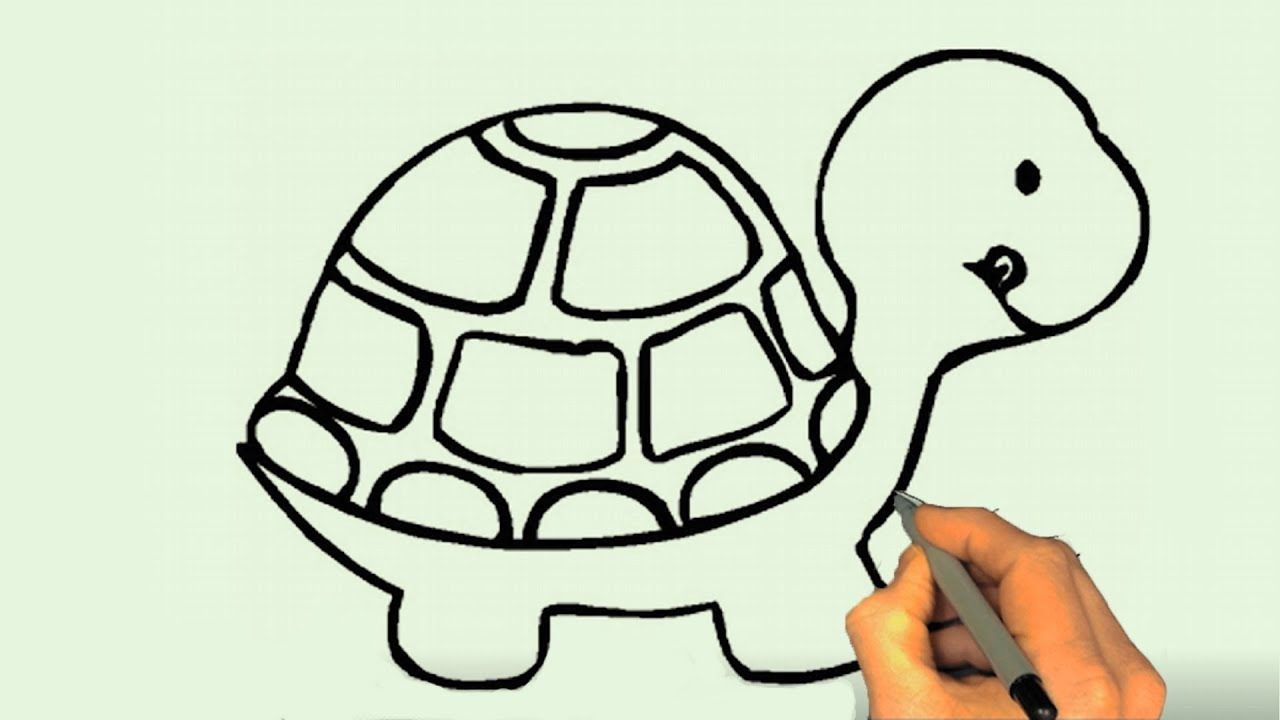 How to Draw a Turtle Easy Step by Step How To Draw A