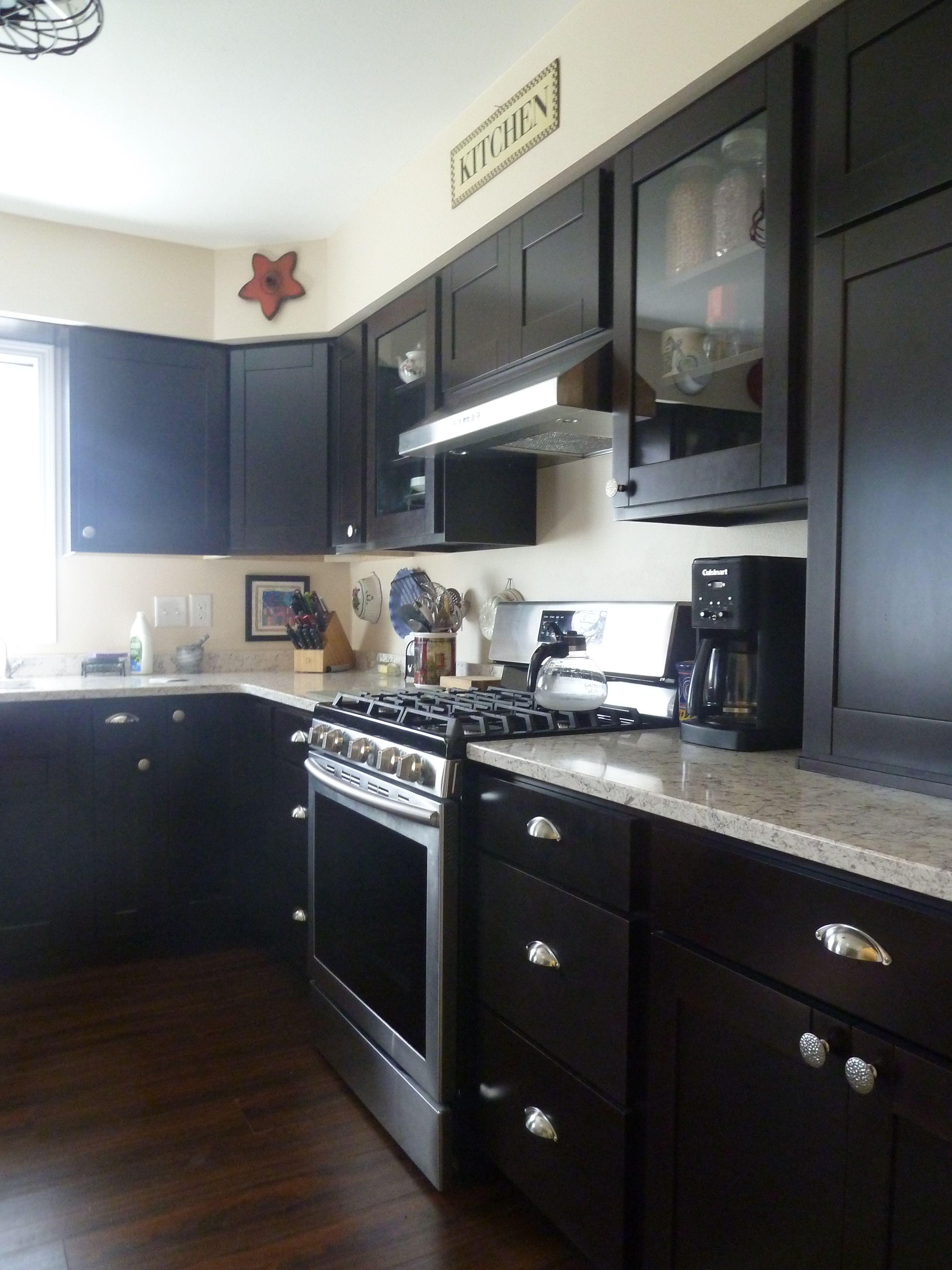 Bridgewood Advantage Custom Cabinets Tescott Door With Espresso Stain  Wilsonart Santiago Quartz Counter Top