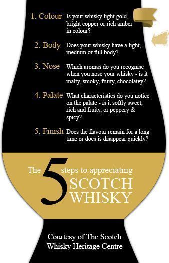 Photo of The five ways to approach your whisky: a guide to understanding the terminology …