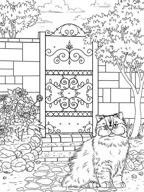 Best Coloring Books for Cat Lovers | Colorear, Mandalas y Dibujos ...