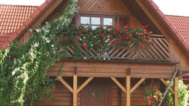 Kwiaty Balkonowe Rosliny Na Balkon Wschodni Pergola Outdoor Structures House Styles