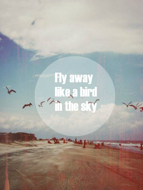 Sometimes I Wanna Fly Away Like A Bird In The Sky Far Away From The Noisy World Words Words Quotes Cool Words