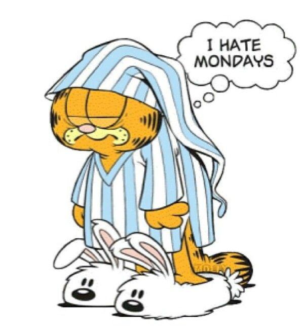 Garfield ~ I hate Mondays | etc.. randomness, quotes ...  I