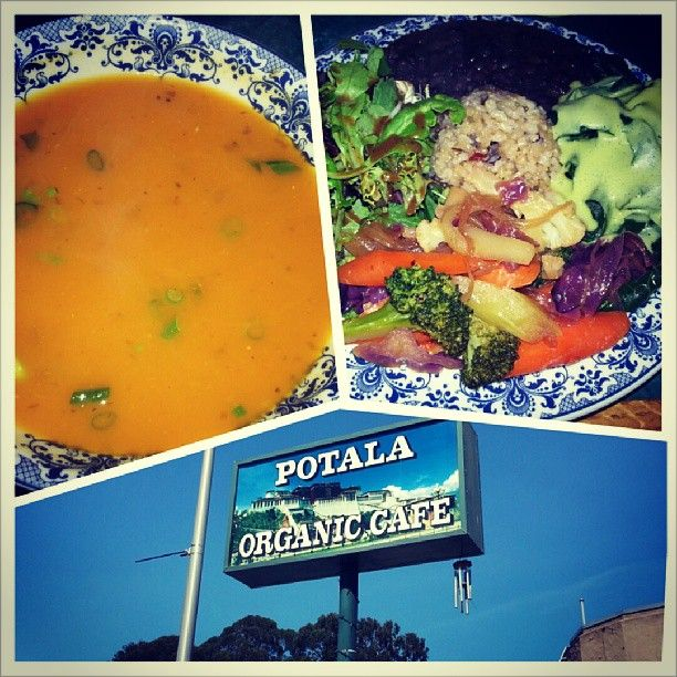 Potala Organic Cafe Organic Recipes Organic Cafe