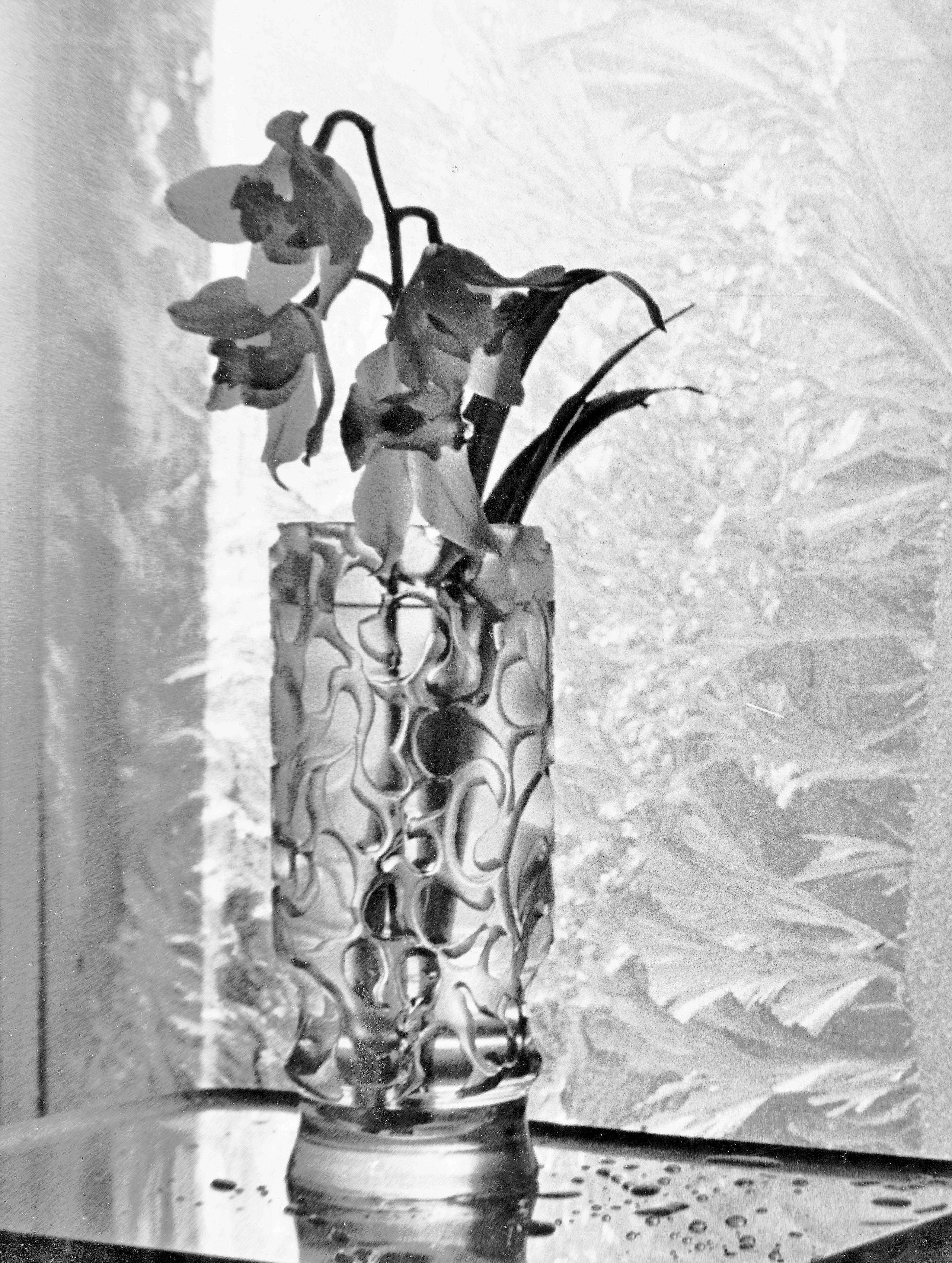 Märt Bormeister.Seadeldis.Lilled ja jäälilled.