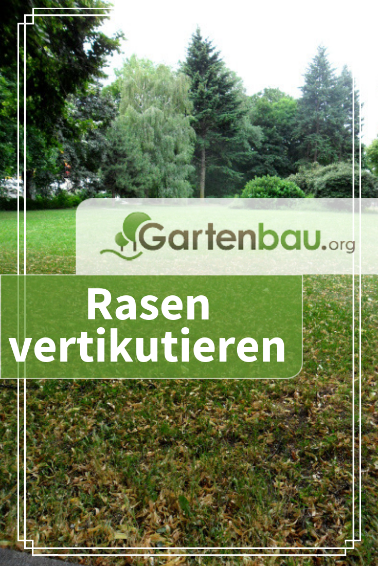 Rasen Vertikutieren Richtiges Vorgehen Zur Richtigen Zeit In 2020 Vertikutieren Richtig Vertikutieren Rasen