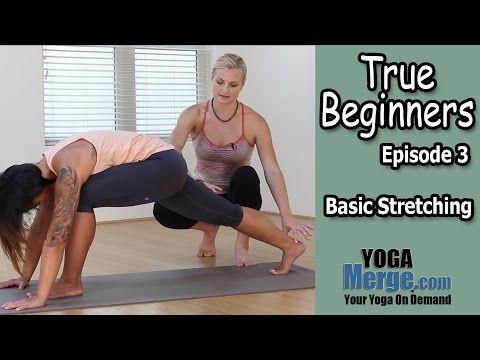 beginner yoga true beginner's episode 3  basic