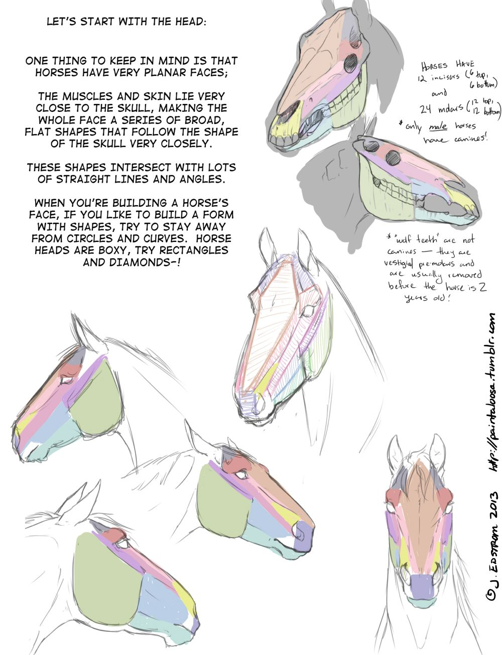 horse drawing tutorial - Buscar con Google | Horse | Pinterest ...