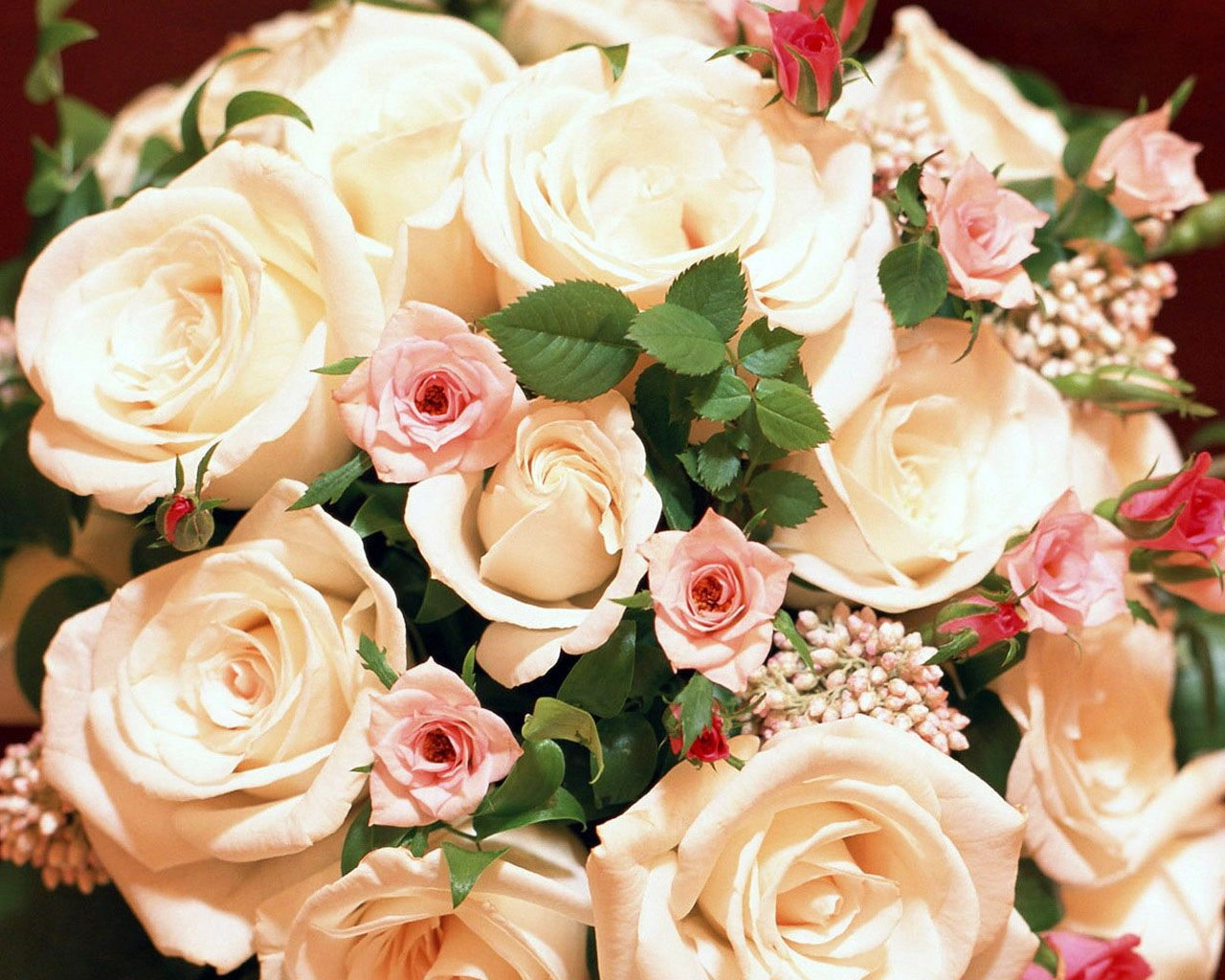 White roses flower wallpaper 6934223 roses pinterest flower white roses flower wallpaper 6934223 mightylinksfo