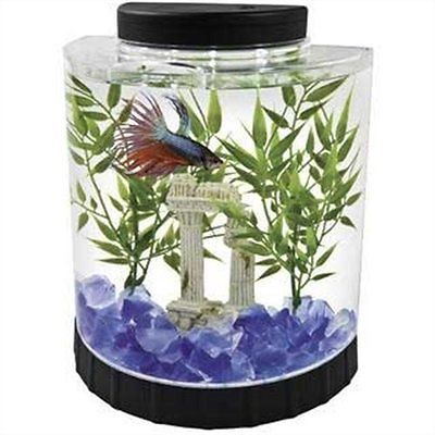Betta Fish Bowl Decorations Tetra Led Half Moon Bettafish Tank Aquarium Decorations