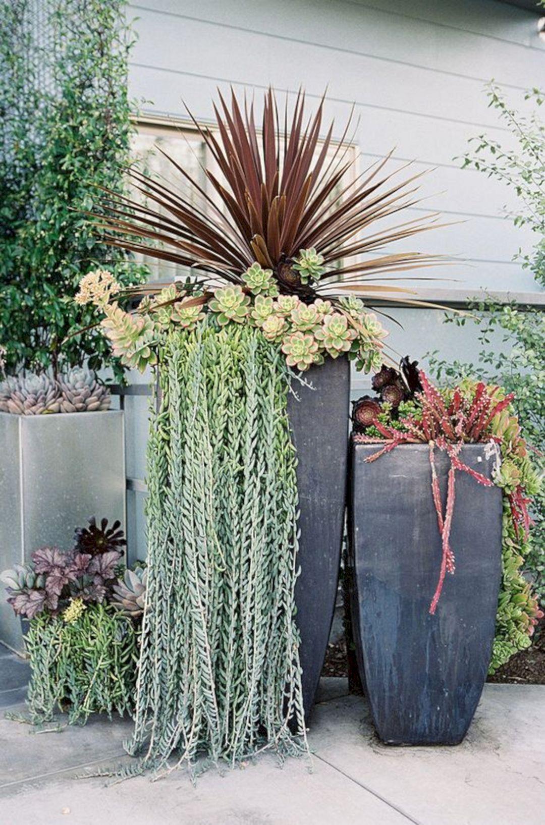 Tall Succulent Planter Ideas Tall Succulent Planter Ideas Design Ideas And Photos Succulent Garden Design Garden Containers Succulent Landscaping