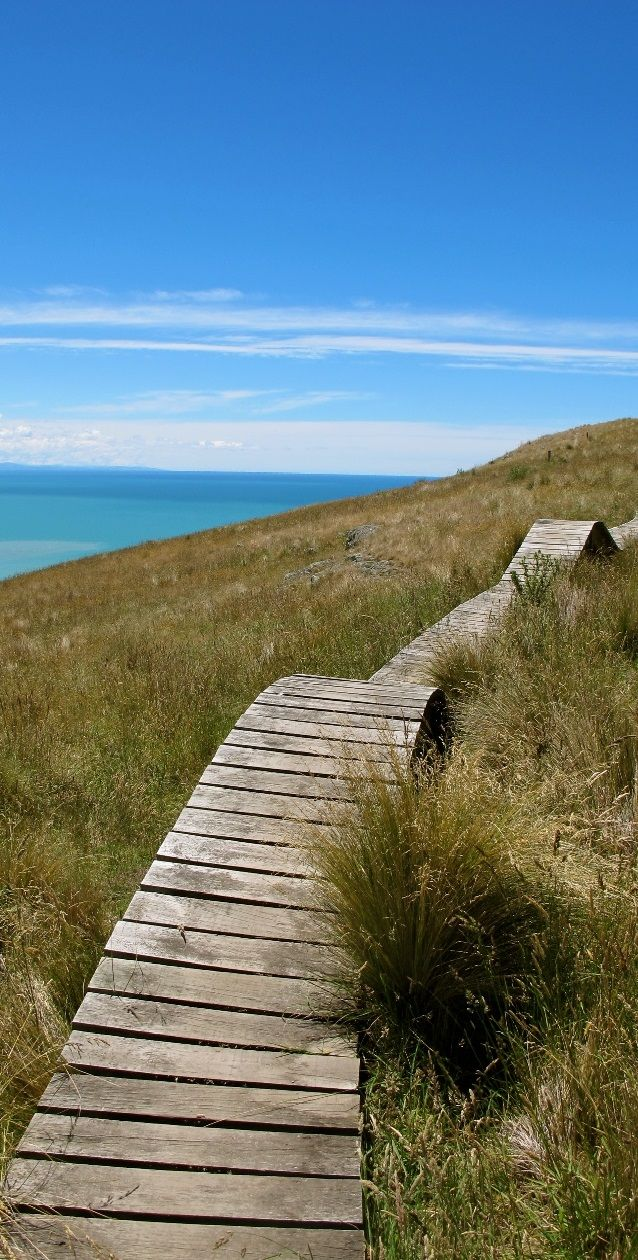 The hiking-biking cannot be beat when you are visiting Christchurch. Don't get suckered into staying on the flat lands! NZ
