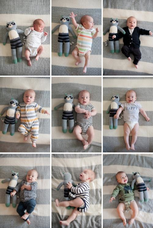 Watching baby grow up with their favorite stuffed animal month to month. Absolutely adorable!
